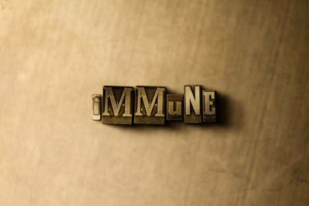 letterpress type: IMMUNE - close-up of grungy vintage typeset word on metal backdrop. Royalty free stock illustration.  Can be used for online banner ads and direct mail.