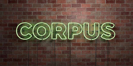 CORPUS - fluorescent Neon tube Sign on brickwork - Front view - 3D rendered royalty free stock picture. Can be used for online banner ads and direct mailers.