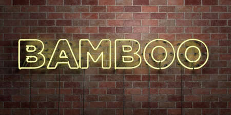BAMBOO - fluorescent Neon tube Sign on brickwork - Front view - 3D rendered royalty free stock picture. Can be used for online banner ads and direct mailers. Banque d'images