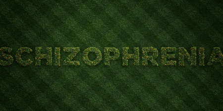free image: SCHIZOPHRENIA - fresh Grass letters with flowers and dandelions - 3D rendered royalty free stock image. Can be used for online banner ads and direct mailers. Stock Photo