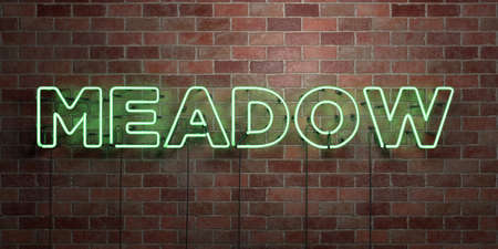 MEADOW - fluorescent Neon tube Sign on brickwork - Front view - 3D rendered royalty free stock picture. Can be used for online banner ads and direct mailers. Banque d'images