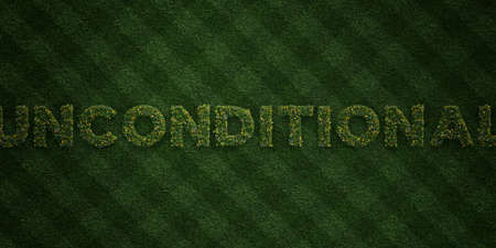 unconditional: UNCONDITIONAL - fresh Grass letters with flowers and dandelions - 3D rendered royalty free stock image. Can be used for online banner ads and direct mailers.