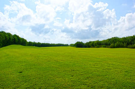vegatation: golf course in mexico Stock Photo