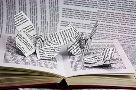 Origami butterflies with words coming out of a book. Istagram style filter applied. Lorem Ipsum text used.