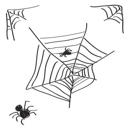 spiders web: Simple hand drawn doodle of a spiders web
