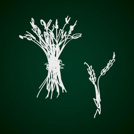 sheaf: Simple mano doodle de una gavilla de trigo Vectores
