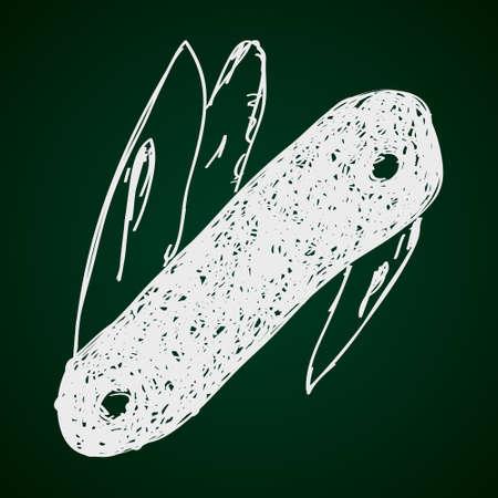 temperino: Semplice Doodle disegnato a mano di un temperino Vettoriali