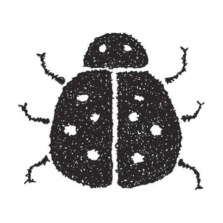 ladybird: Simple hand drawn doodle of a ladybird