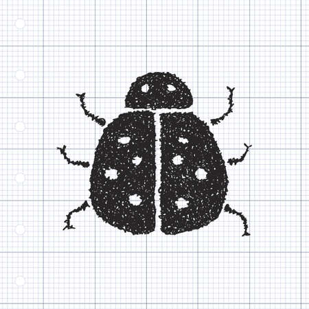 ladybird: Simple hand drawn doodle of a ladybird