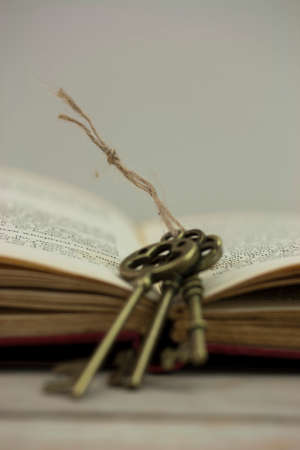 antique keys: Set of old antique keys with book on a wooden background. Stock Photo