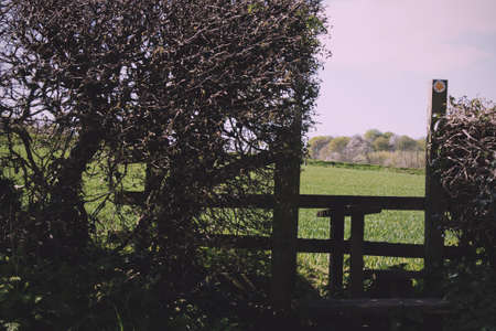 stile: Wooden country stile in a hedge leading to field Vintage Retro Filter.
