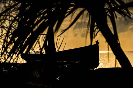 Vintage fishing boat on the shore in a moody warm weather.