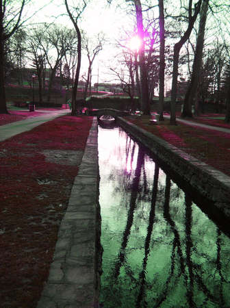 A Park Scene with a stream, trees and trippy colors