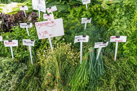 Herb stand close up at the local farmers market in Virginia Zdjęcie Seryjne