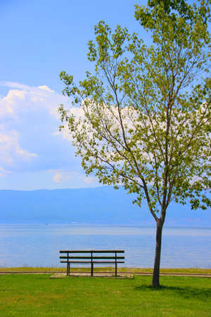 a bench stands on a green meadow. next to it is a small tree. in the background, a big lake and mountains