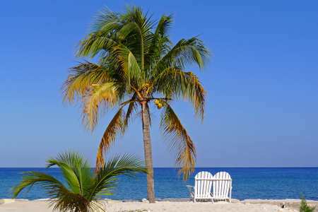 love seat: Jamaica Love Seat under a palm tree with a view Stock Photo