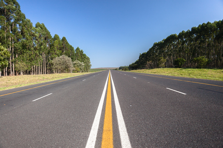 Middle of dual road highway with its paint markings and forest trees vegetation both sides