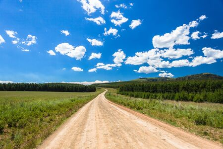 Dirt road through mountains and forest trees plantations on a summers day photo