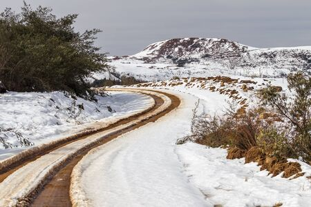 twist cap: Dirt road tracks leading to the snow covered mountains  Stock Photo