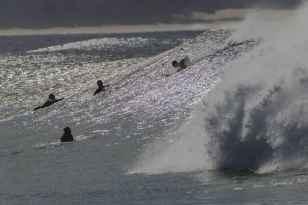 silhouetted: Surfers silhouetted surfing waves Stock Photo