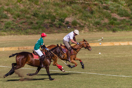 Equestrian Polo pony and player plays hits ball at goals at speed
