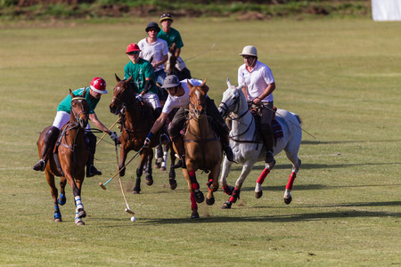 Equestrian Polo horse ponies players play ball and position