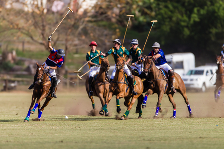 Equestrian Polo ponies players gallops challenge ball possession