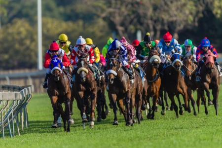 Race Horses jockey s in colors bunched together on railing focusing on winning Redactioneel