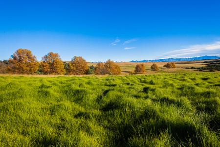 campagne rural: Rural beaut� paysage campagne dans l'herbe verte terrain de montagne Banque d'images