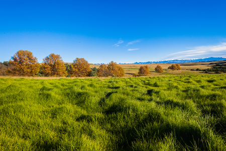 rural countryside: Rural countryside landscape beauty in the grass green mountain terrain