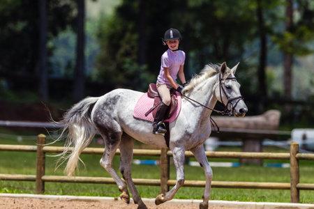 regional: Jinete joven del caballo en la competici�n ecuestre estado regional