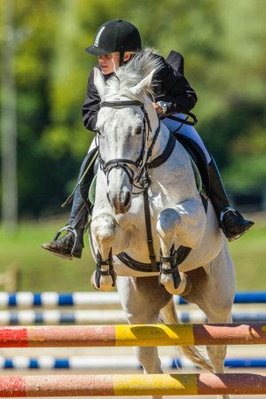 Cavaliere del cavallo ragazza saltando metà volo sopra porta allo stato regionale competizione equestre