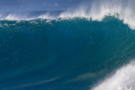 ocea: Morning backlight good size ocean wave wall of water upright crashing on shallow reefs