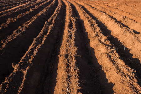 grooves: Agriculture farming earth field season plowed grooves of rich soil awaiting planting Stock Photo