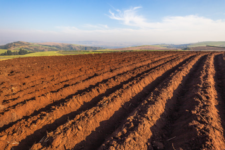 Agriculture farming earth field season plowed grooves of rich soil awaiting planting photo