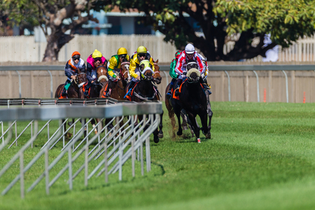 Horse racing jockeys in owner colors pacing pack on green grass track along the guard rail