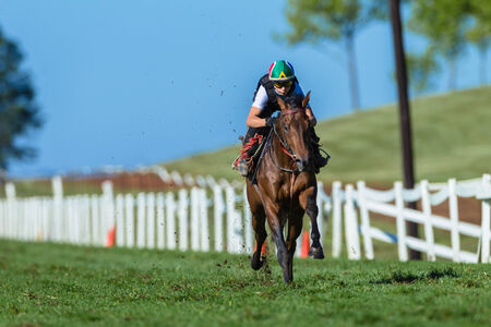 Race horse and jockey in morning gallop running fitness training on grass track in rural countryside