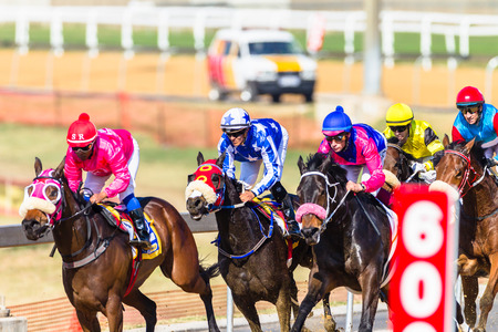 Horse racing action of jockeys races at Greyville racecouse sand and grass for Durban July vodacom cup. Redactioneel