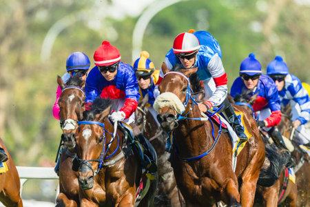 Horse racing jockeys action close-up at Greyville grass track for Durban July