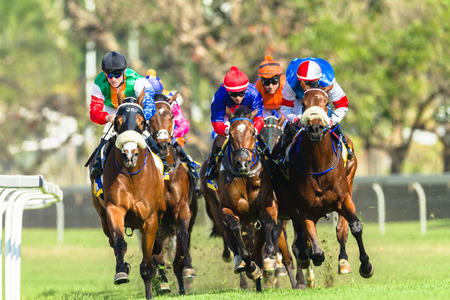 Horse racing jockeys action close-up at Greyville grass track for Durban July  Stock Photo - 30428677