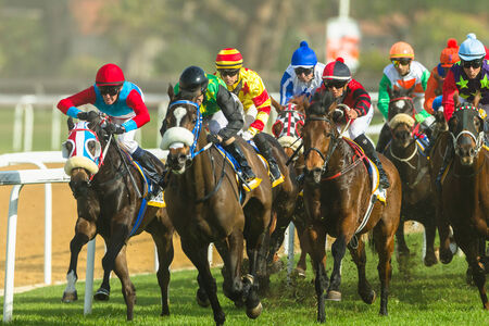 Horse racing jockeys action close-up at Greyville grass track for Durban July