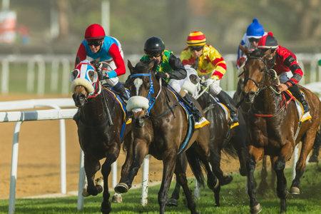 jockey's: Horse racing jockeys action close-up at Greyville grass track for Durban July