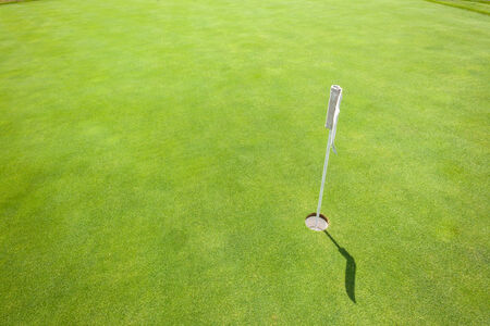 predicted: Golf putting practice green flag hole