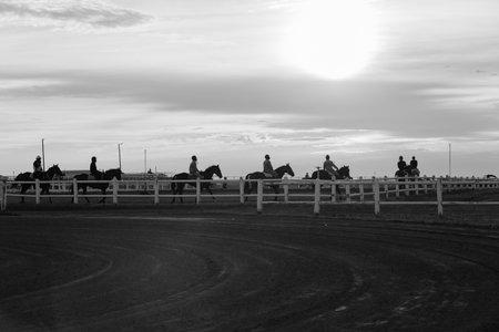 Race horses Riders  jockeys morning training on track landscape in black white vintage.