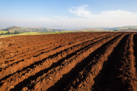 grooves: Farm plowed grooves for planting Stock Photo
