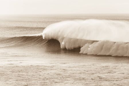 swells: Wave crashing ocean swells water power Stock Photo