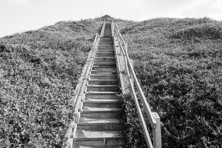 black and white image: Stairs up hillside in black and white vintage tone