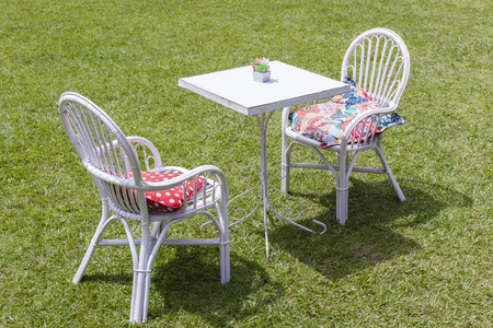 summers: Table for two persons outdoors green grass summers day