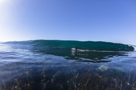 escapes: Surfer surfing escapes danger on reef shallow ocean wave swimming closeup.