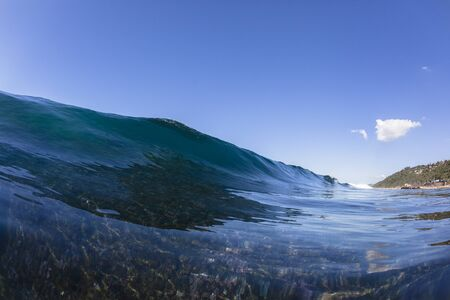 swells: Ocean wave swell on shallow reef blue water swimming closeup.